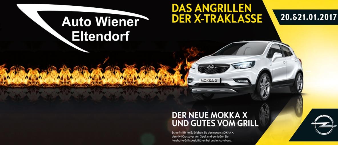 Angrillen 2017 Wiener